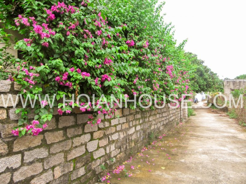 5 BRD HOUSE FOR RENT IN RIVER VIEW IN HOI AN (#HAH07)