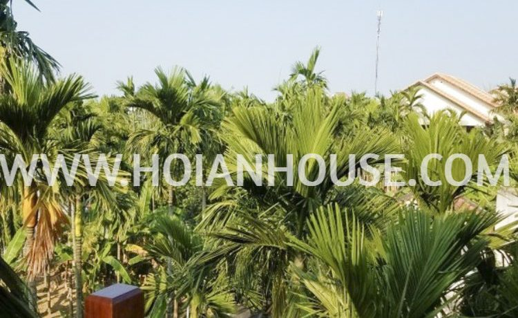 APARTMENT FOR RENT IN HOI AN. 10