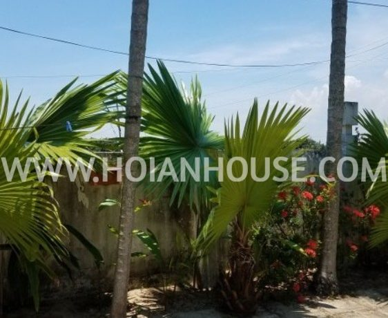 3 BEDROOM HOUSE FOR RENT IN TRA QUE, HOI AN 01