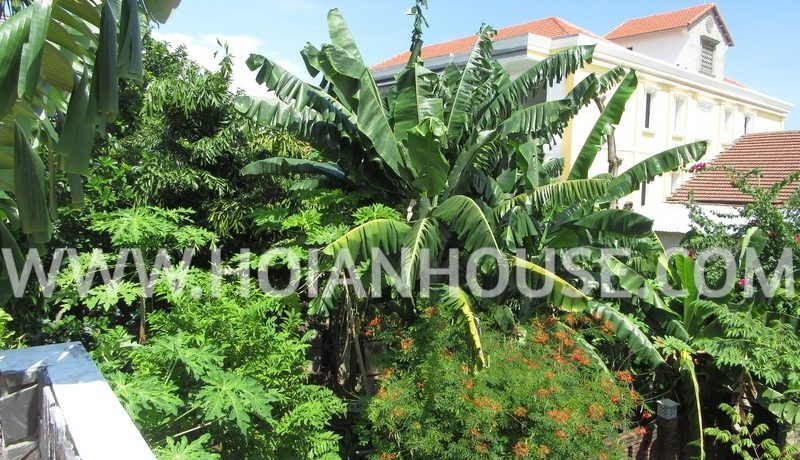 2 BEDROOM HOUSE FOR RENT IN HOI AN (#HAH69)_12