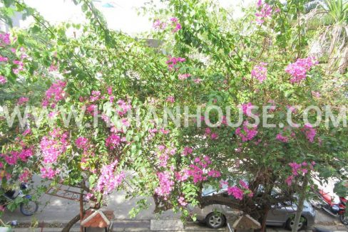 4 BEDROOM HOUSE FOR RENT IN HOI AN (#HAH65)14