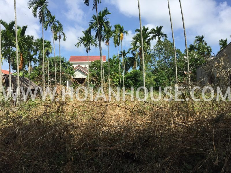 LAND FOR SALE WITH RIVER VIEW (#HAS03)