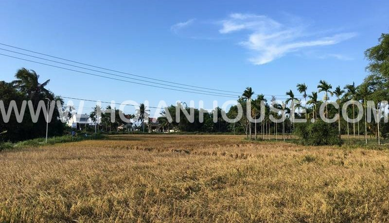 THE LAND FOR SALE IN HOI AN (#HAS09)_3