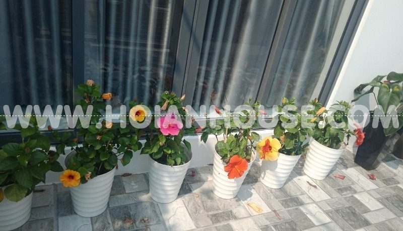 3 BEDROOM HOUSE FOR RENT IN HOI AN (#HAH217)_15
