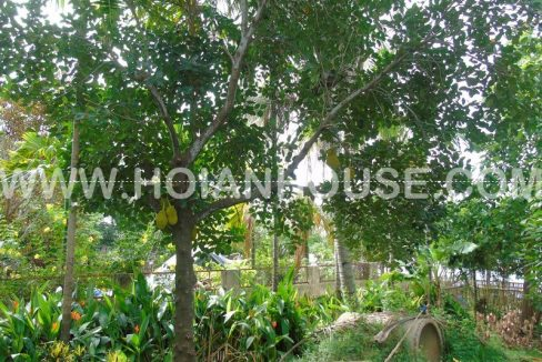 4 BEDROOM HOUSE FOR RENT IN HOI AN (#HAH252)_26