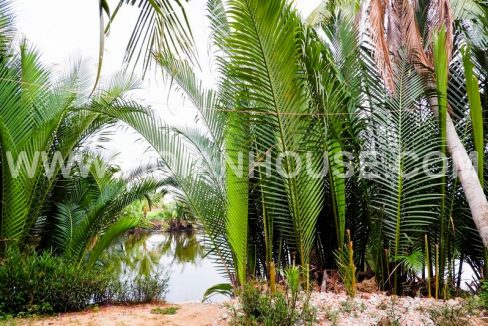4 BEDROOM HOUSE FOR RENT IN HOI AN (#HAH344) 18