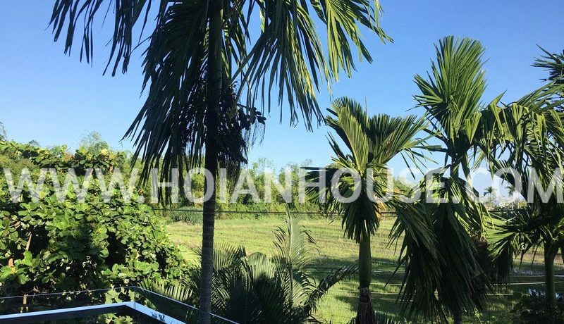 3 BEDROOM HOUSE FOR RENT IN HOI AN3