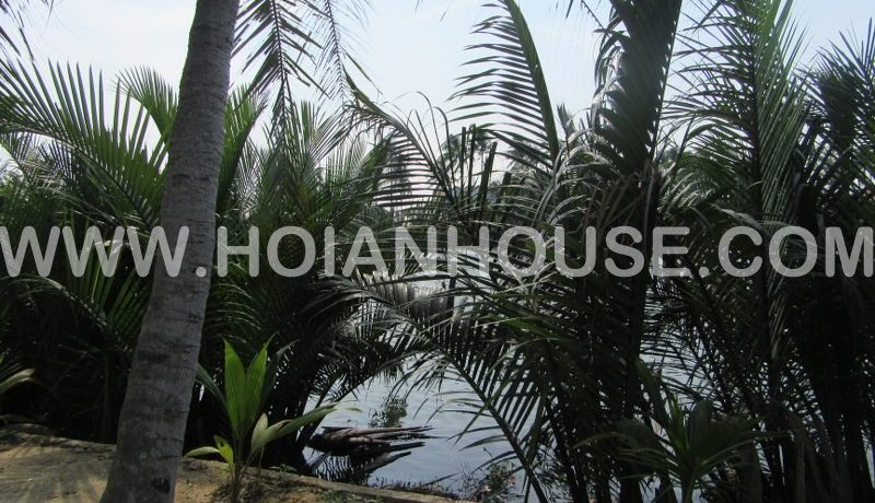 3 BEDROOM HOUSE FOR RENT IN HOI AN (with Swimming Pool) (#HAH198) 3