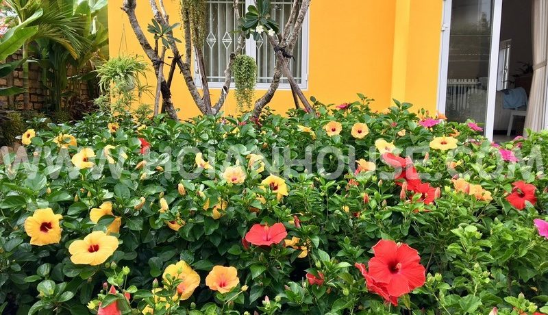 2 BEDROOM HOUSE FOR RENT IN HOI AN (#HAH294) 3(1)