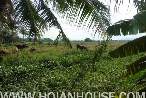 6 BEDROOM HOUSE FOR RENT IN HOI AN (#HAH380) _28
