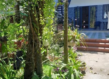 1 BEDROOM APARTMENT FOR RENT IN HOI AN (#HAA368)_4